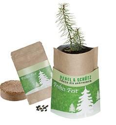 Weihnachtsbaum Samen.Natur Bag Weihnachtsbaum