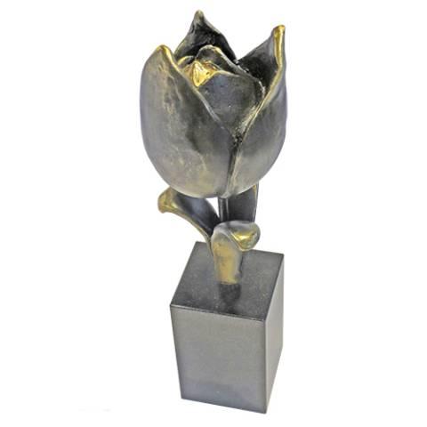 Geschenk Tulpe