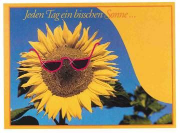 Samentütchen Sonne 115x156 mm,Zwergsonnenblume