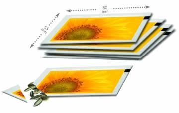 Samentütchen 80x55 mm, Zwergsonnenblume, Standardmotiv, dto