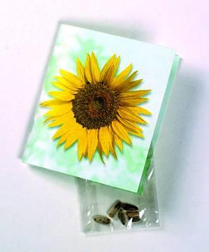 Klappkärtchen Sonne, Zwergsonnenblumen-Samen, 1-4 c Digitaldruck
