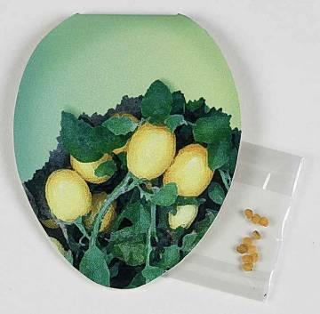 Klappkärtchen Ei-Form, Eierbaumsamen,  1-4 c Digitaldruck inklus