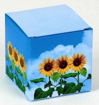 Würfel Sonnenblume
