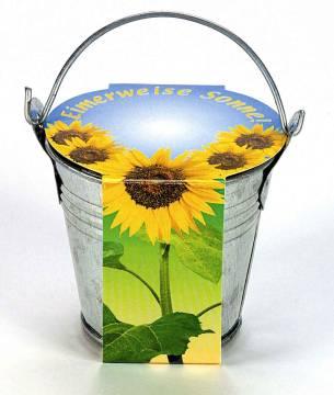 Zink-Eimerchen Sonne, Zwergsonnenblume, 1-4 c Digitaldruck inklu