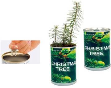 Weihnachtsbaum-Dose Fichte