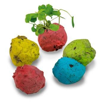 Bunte Mini Flower Balls