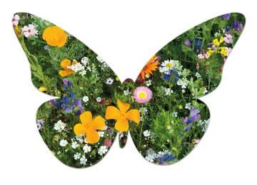 Samenpapier Schmetterling