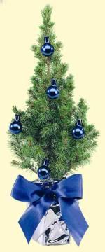 Bäumchen blau 20-30 cm (5 blaue Kugeln), in Einzelkartonage ohne